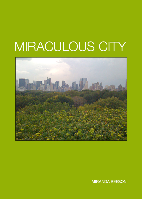 MIRACULOUS CITY_cover